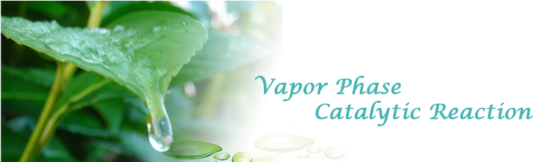 Vapor Phase Catalytic Reaction